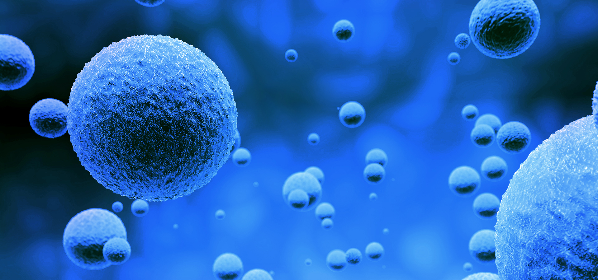 LIFE SCIENCES & HEALTHCARE